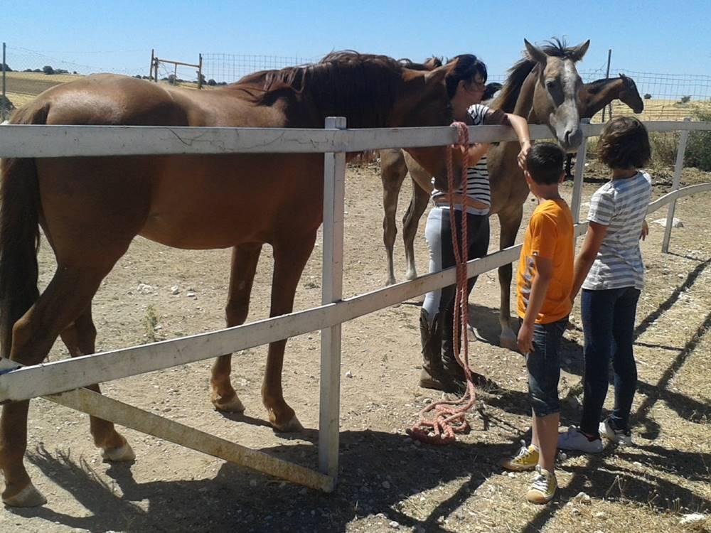 Ana Maria S Valdeavellano Verano 2016 Susurrando a los caballos